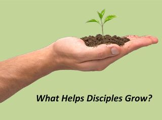 What Helps Disciples Grow PIC